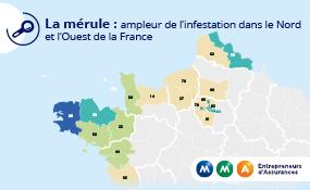 MMA_carte_France_Merule.jpg